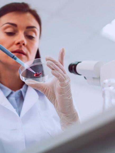 Máster en Biología Molecular y Citogenética (Con Certificación Universitaria Internacional y Reconocimiento de 30 ECTS)