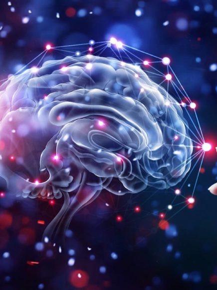Máster experto en Neurología + Máster experto en Neuropsicología (Con Certificación Universitaria Internacional + Reconocimiento de 60 ECTS)
